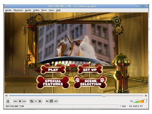 VLC-Media-Player_Sample