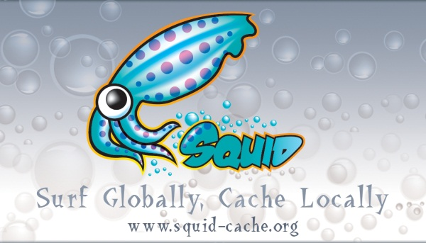 squid cache proxy